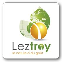 leztroy